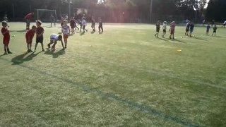 Training Session Cubs U7