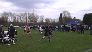 another try  by royston u12's running rampant
