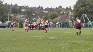 WRFC 2nd XV vs Old Verulamians 2nd XV - 13 September 2014