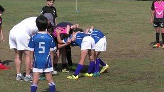 Okapi Wanderers Rugby FC U9  Key BIscayne at St Agnes School 02 16 2019