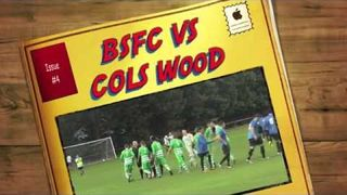 Bedfont Sports Vs Colliers Wood Away Days