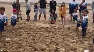 Cubs beach training