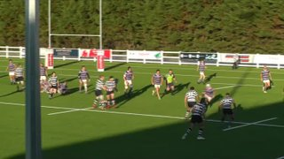 Havant v Hove 3.11.18 Try 3 Harrison Young