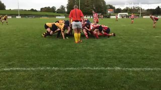 Wasps Skirmish 2 v Sefton