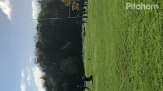 Telford vs Shrewsbury Conversion #1