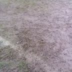 Barnhurst Home Pitch 29 Feb