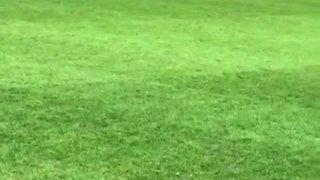 MSFC Goal - Harry Bugden
