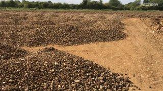 Piles of picked stones